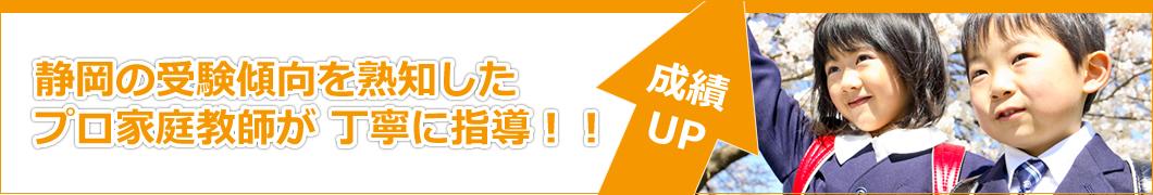 静岡の受験傾向を熟知した プロ家庭教師が 丁寧に指導!!